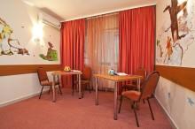 salon-joaca-hotel-orizont-cozia-02